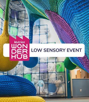 Low Sensory Visit (D19)