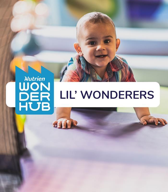 Lil' Wonderers - Wondering About Hibernation (D13)